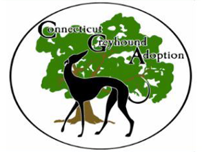 Connecticut Greyhound Adoption - GPA