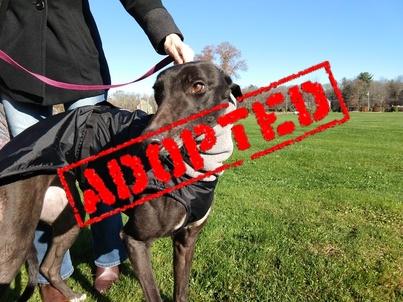 Ida Adopted